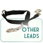 Other Leads