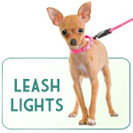 Leash Lights