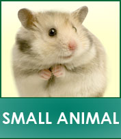 Small Animals Supplies