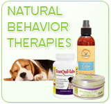 Natural Behavior Therapies