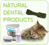 Natural Dental Products